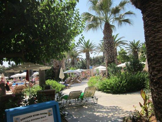 Aquila Rithymna Beach Hotel : красивая территория