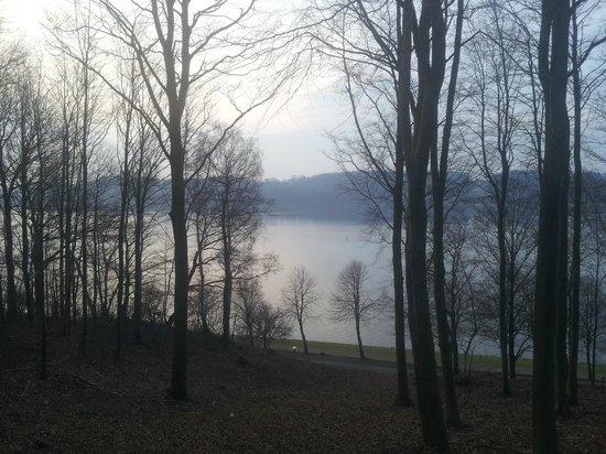 Hotel Koldingfjord: View from near room