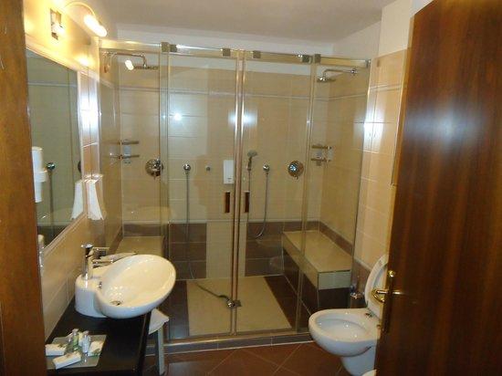 Family & Wellness Hotel Shandranj : bagno