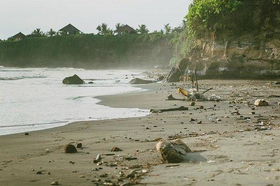 Pondok Pitaya: Hotel, Surfing and Yoga: Pondok Pitaya