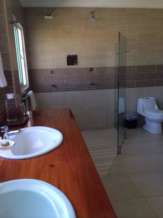 Iguana Crossing : Bathroom with double shower!