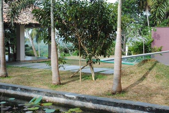 Kahanda Kanda: The Grounds
