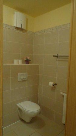 Central Passage Budapest Apartments : banheiro