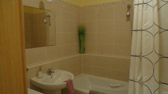 Central Passage Budapest Apartments: banheiro ótimo