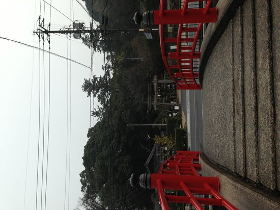 Tamatsukuriyu Shrine: 正面から