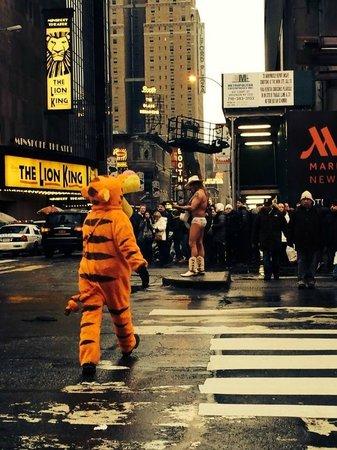 Times Square : вот такие зверюшки гуляют на Тайм Сквер