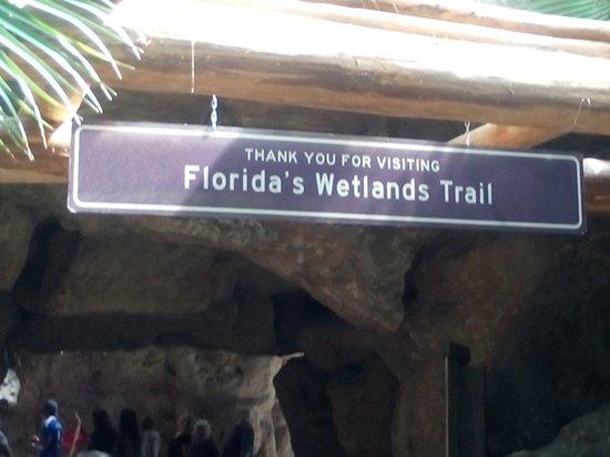 The Florida Aquarium: Aquarium