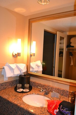 Anaheim Marriott Suites: Baño compartimentado