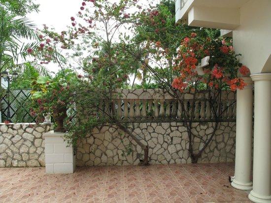 Rayon Hotel : Courtyard