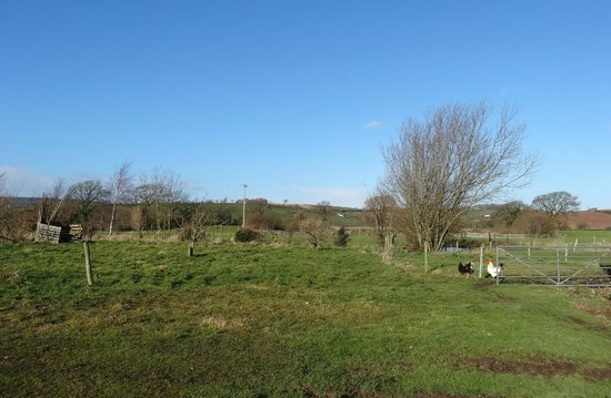 Spillers Farm: View of the farm and beyond