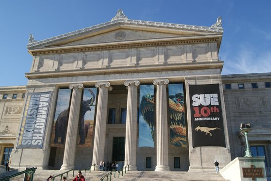 The Field Museum: 16
