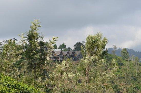 98 Acres Resort and Spa: 98 acres en pleine nature