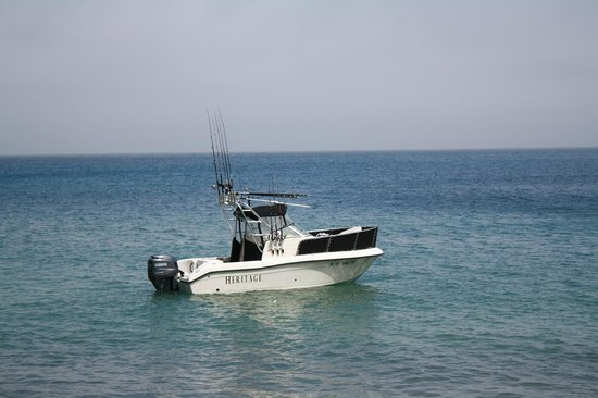 """Reel to Reef Charters: Boat named """"Heritage"""" Specializes in 2 to 4-packs fishing"""
