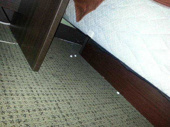 Super 8 Sioux Falls Near Convention Center: pills under the bed/night stand