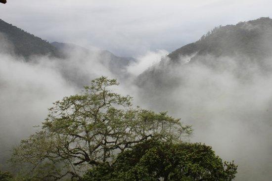San Jorge de Tandayapa Hummingbird Sanctuary & Lodge: View from the balcony at Tandayapa