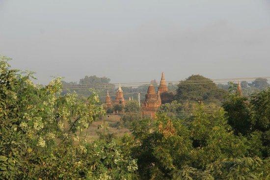 Thurizza Hotel Bagan : Vue depuis la terrasse