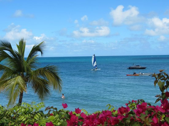 Blue Waters Antigua : View of Cove with Hotel Sailing Craft