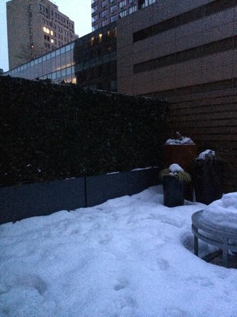 Hyatt Union Square New York : Urbane Terrace