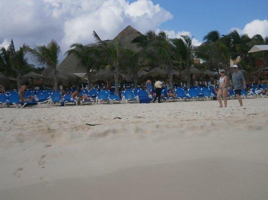 Viva Wyndham Maya: vista desde la playa