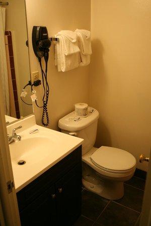 Aikens Lodge: Teil-modernisiertes Badezimmer