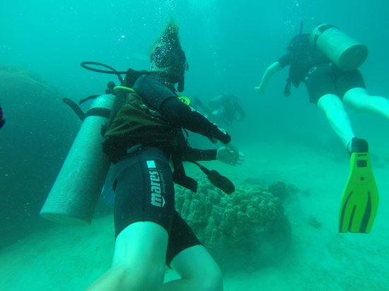 Planet Scuba: Under water with Scott and fellow divers.