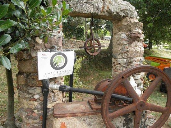 Camping el Pasqualet: Punto elegido por la Asociación Fotografía y Biodiversidad