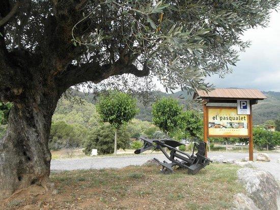 Camping el Pasqualet: Entrada del Camping