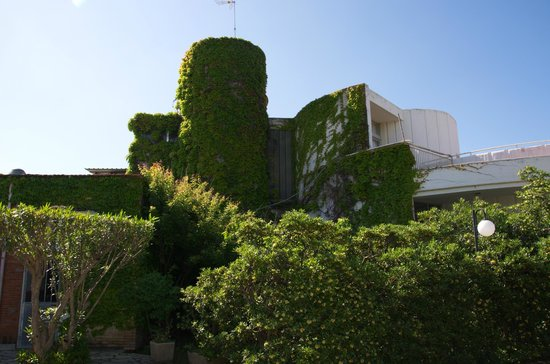 La Conchiglia: Территория отеля