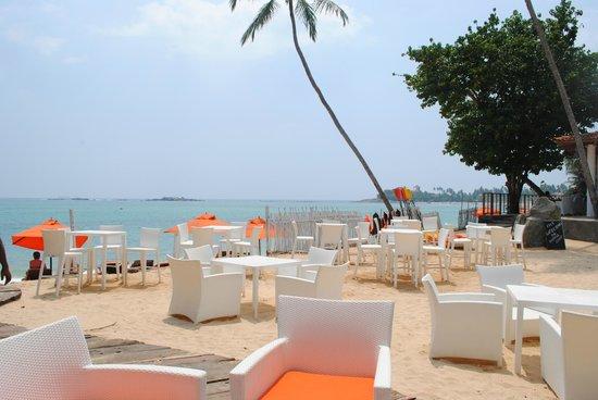 Calamander Unawatuna Beach : In front of the beach bar