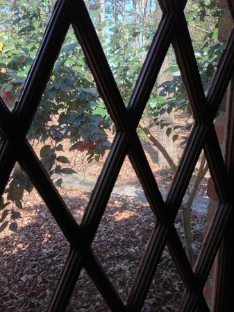 The Squire's Vintage Inn : View out window of king bed room (#131 on end, which is most private room at the Inn)