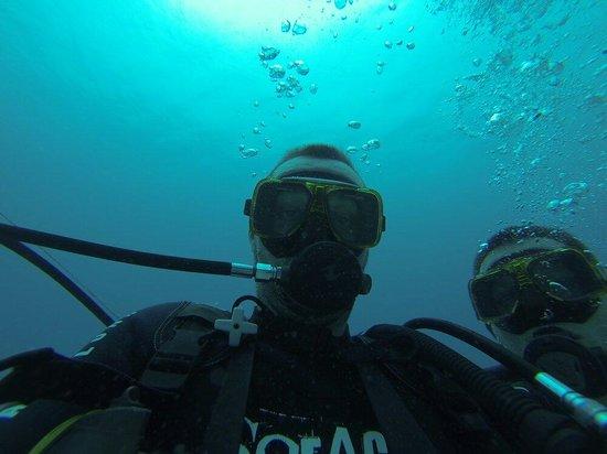 Ocean Spirit Dive Center : Premiere plongée aquarium pereybere