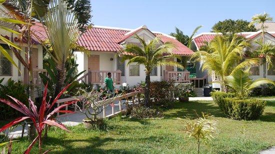 Dome Resort : chambre en bungalow