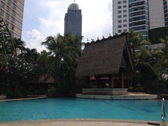 Grand Hyatt Jakarta: Pool View
