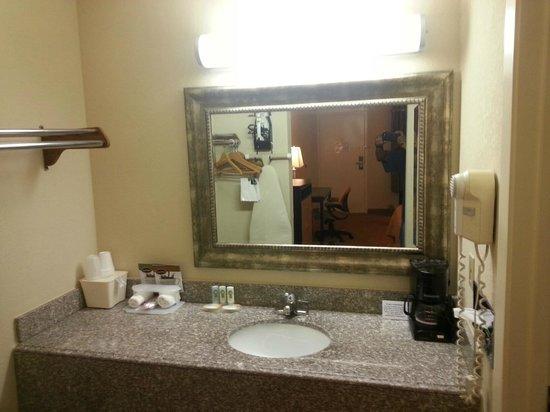 Red Roof Inn & Suites Addison : Bathroom