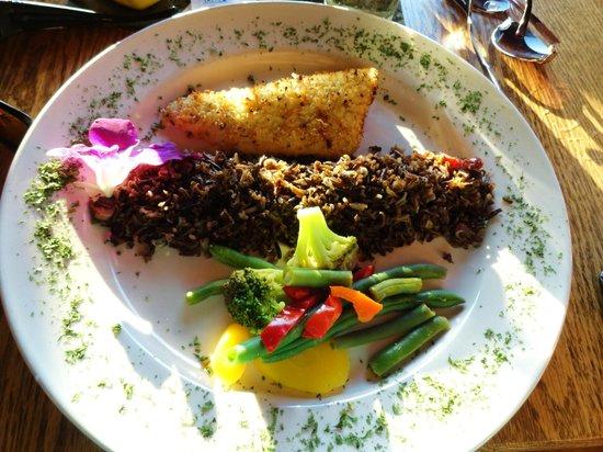 Gunflint Lodge: Walleye and MN Wild Rice :)