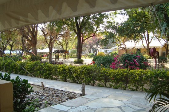 Samode Bagh : View from our room