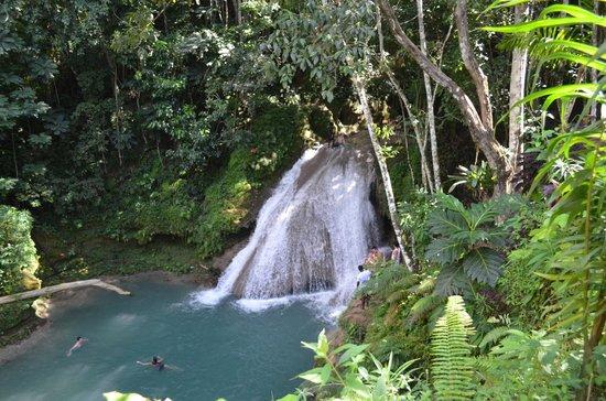 Liberty Tours Jamaica - Day Tours : Blue Hole