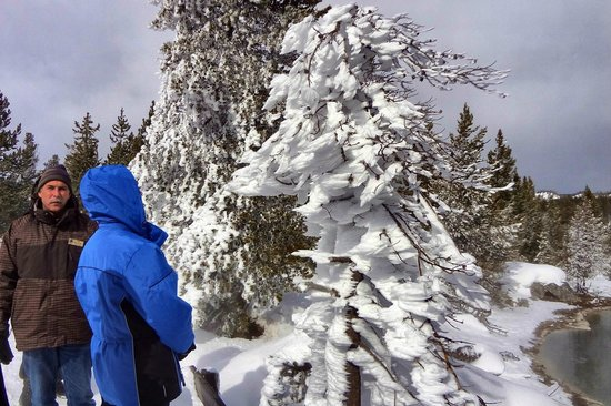 Yellowstone Lake: Jon, pointing out unusual steam/frost formation on a tree