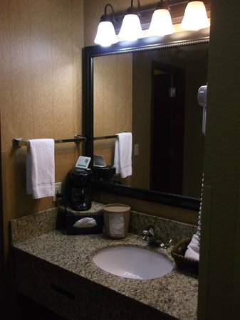 Bearskin Lodge on the River Hotel : Bathroom counter