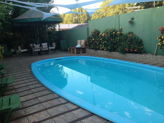 Green House Hostel: Green House, swimming pool