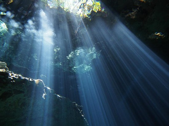 Alux Diver : Light from forest
