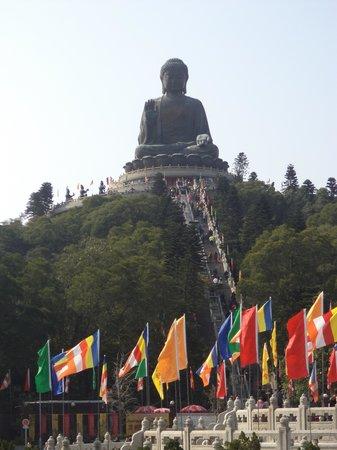 Hong Kong SkyCity Marriott Hotel : Buddha from a distance