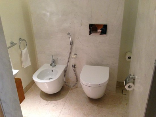 Park Hyatt Abu Dhabi Hotel & Villas: Toilet