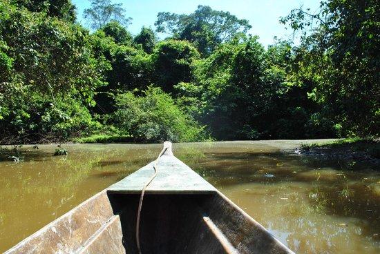 Inkaterra Reserva Amazonica: Excursión por los alrededores