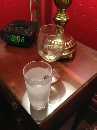 Cromwell Manor Inn : Stinkbug - rim of water glass