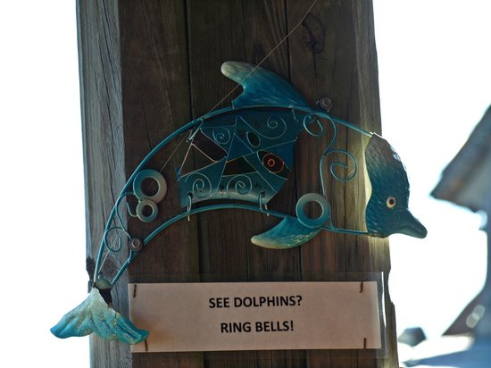 Sculley's Boardwalk Grille : If you see a dolphin, ring a bell.  We didn't see any but still a neat thing for patrons.