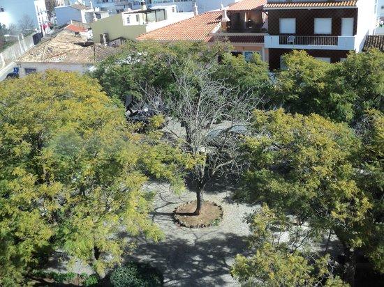 Loule Jardim Hotel: View from room