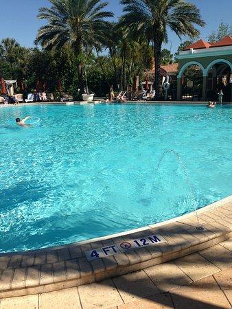 Renaissance Orlando at SeaWorld: Pool