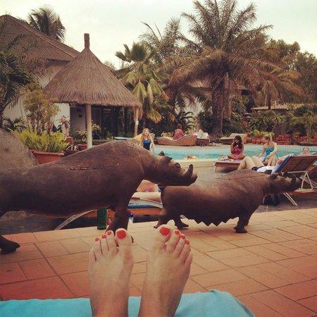 Bakotu Hotel : relax