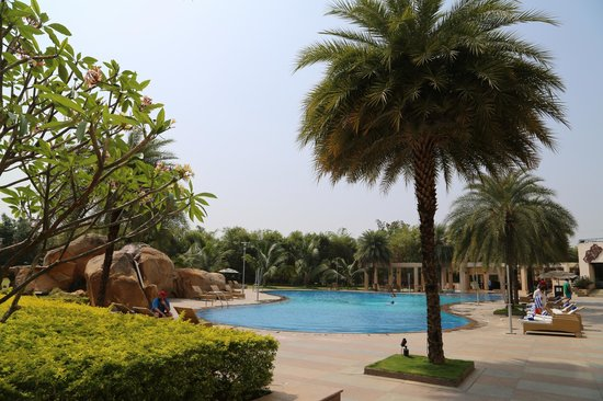 Novotel Hyderabad Convention Centre : Outdoor pool area